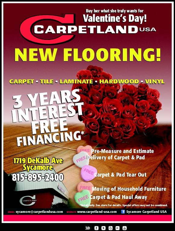 carpetland-1-5-2015