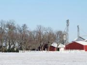 winteronthefarm