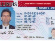 drivers-license
