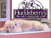 huckleberryspetparlor