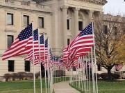 veteransdaycourthouseflags