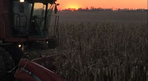 harvestdonesunset