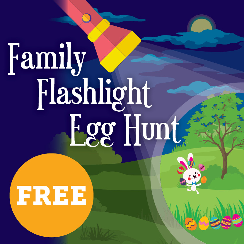 FamilyFlashlightEggHunt