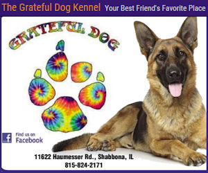 Grateful Dog Kennel