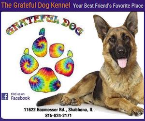 Grateful Dog Kennel