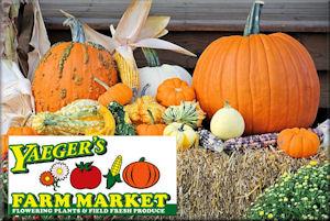 Yaegers Farm Market For Pumpkins