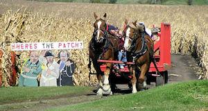 The pumpkin train in waterman opens this friday! | dekalb county.