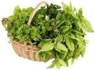 Herbs[1]