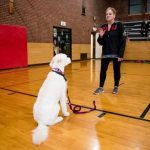 DeKalb Park District Dog Obedience Classes