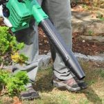 State Politics: New Illinois Bill to Ban Gas Leaf Blowers