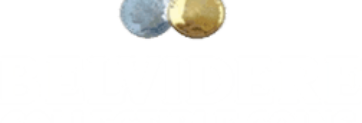 Belvidere Collectible Coins